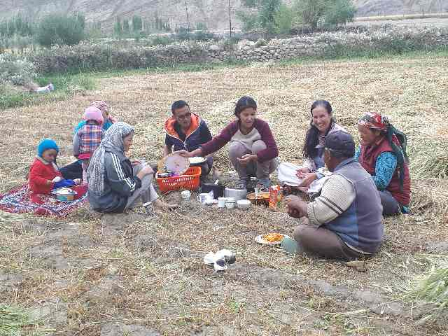 Family lunch in harvested field. Likir, Ladakh