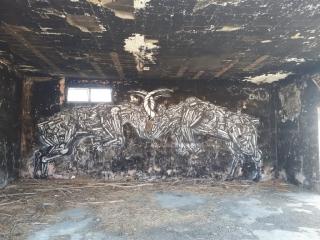 Dede. Ibex figting. Symbolizing Dead Sea destruction. Gallery Minus 430