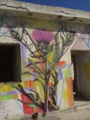 Israeli summer thorn. Minus 430 Gallery, Kalya