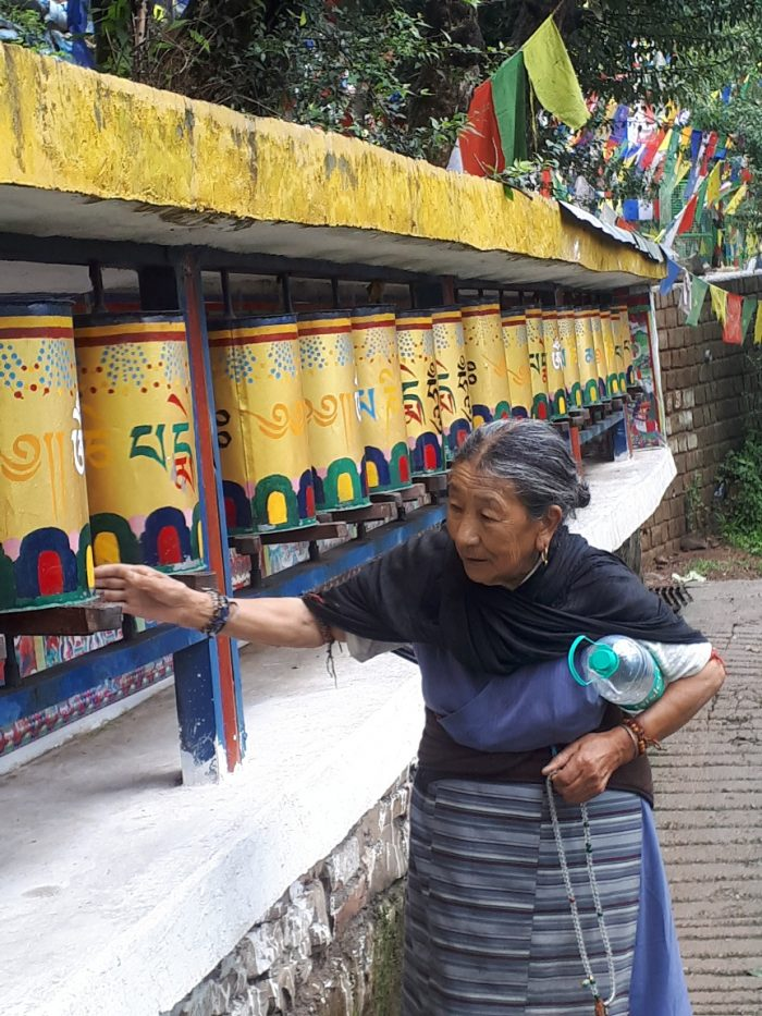 Buddhist practices. Old lady at prayer wheels, on back road from Dalai Lama's temple to Dharmashalla