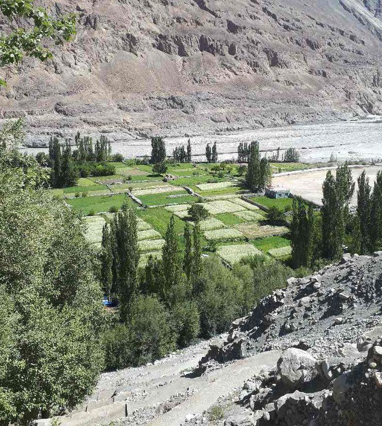 View over fields, Turtuk village, Nubra Valley, Ladakh, India