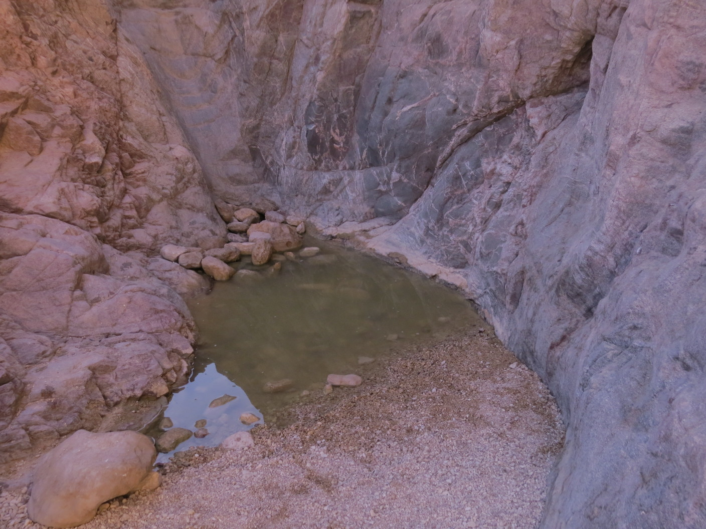 Rock rain pool (Gev) in Painted Desert, Arava, Israel