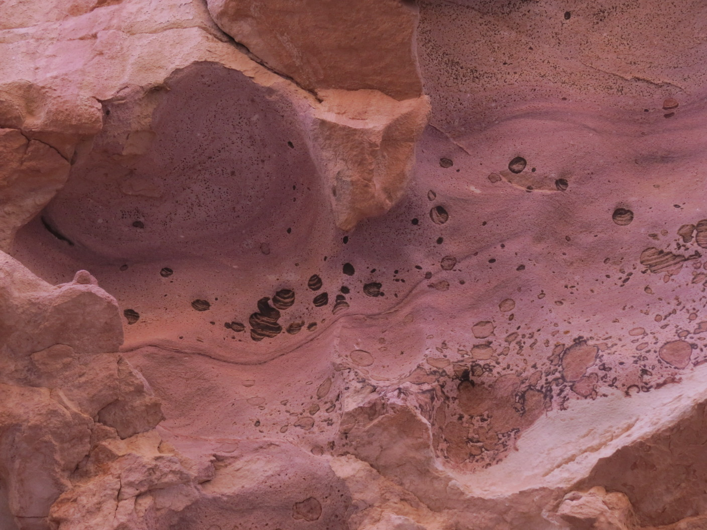 Porous, colorful rock. Painted Desert, Arava, israel.