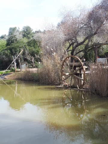 The water wheel, Neot Kedumim