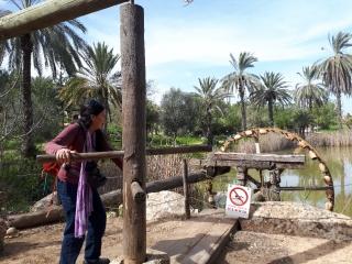 Turning the water wheel, Neot Kedumim