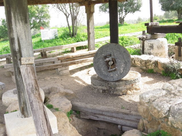 Oil press, Neot Kedumim