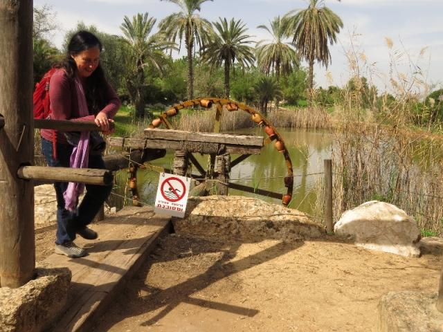 Turning the water wheel, Neot Kedumim