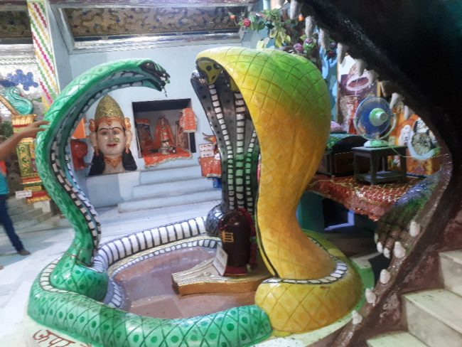 Amritsar Ladies temple - Shiva Lingam with cobras