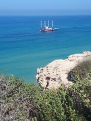 Gas installation off-shore, Netanya