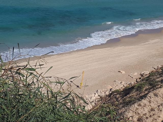 Netanya's beach viewed from above