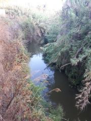 Poleg Nature Reserve, Sharon, Israel