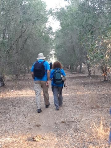 Walking in the pecan plantation, Sharon