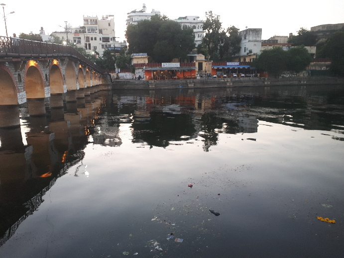 Flowers and garbage on Udaipur river at dusk
