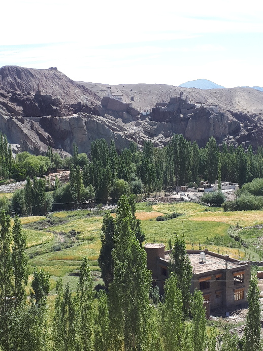 Likir Village view, Ladakh