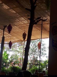 Mano Tree Cafe, Pushkar, Rajasthan