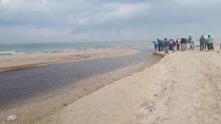 """Our hiking group by Alexander """"River"""" estuary, Israel"""