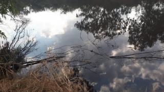"Alexander ""River"" reflections. Sharon, Israel"