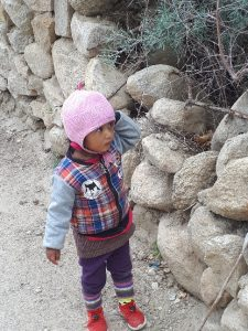 Little Stanzin by stone fence, Likir