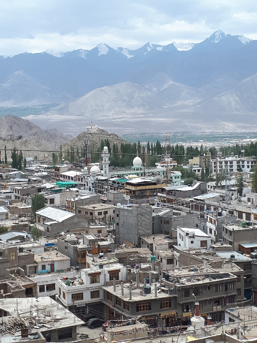 Mosque, city and mountains viewed from Namgyal Tsemo Monastery, Leh