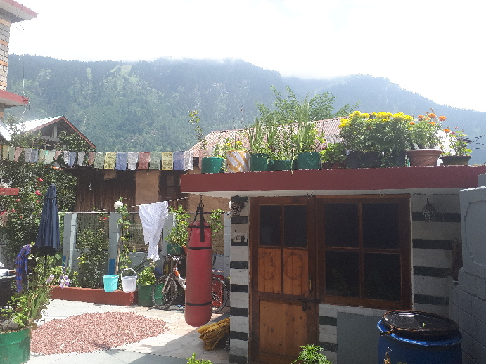 Tiger's Eye Hotel, Himachal Pradesh.drying beans