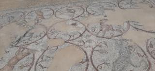Floor of Gaza synagogue. Good Samaritan Outside Museum