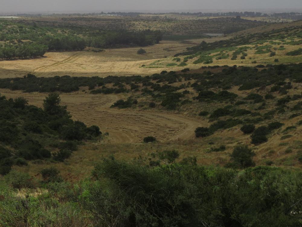 Landscape. Beit Guvrin National Park