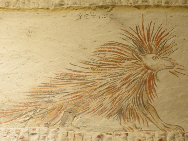 Porcupine, Apollophanes Cave, Beit Guvrin National Park