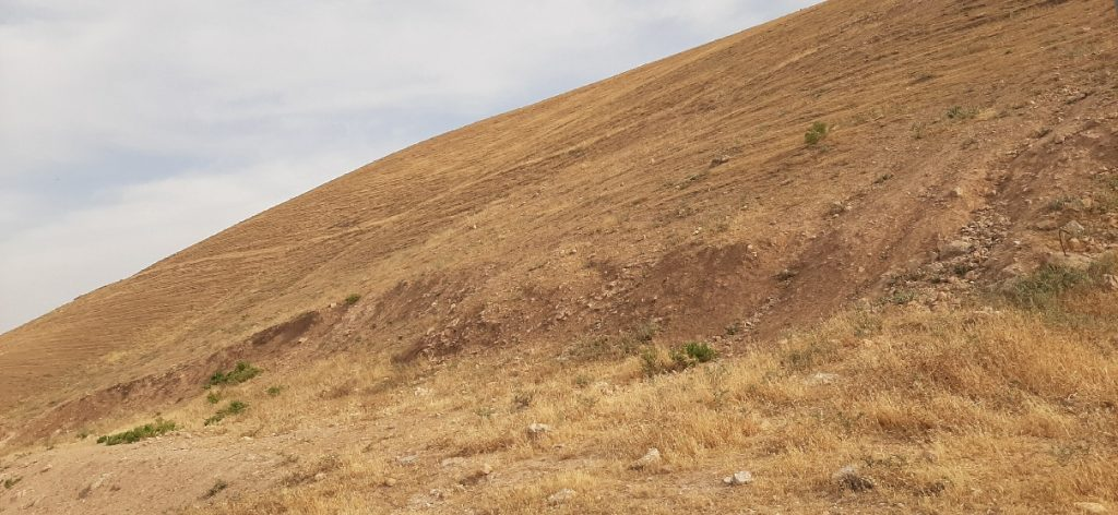The stark Judean desert outside the Good Samaritan Inn