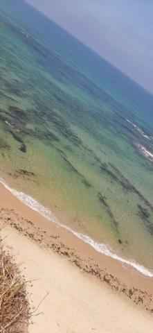 This beautiful sea. Apollonia