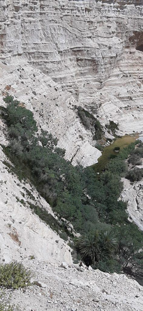 Ein Avdat canyon seen from Mitzpor viewpoint