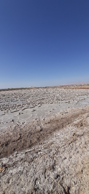 Salt flats north of Lido Junction