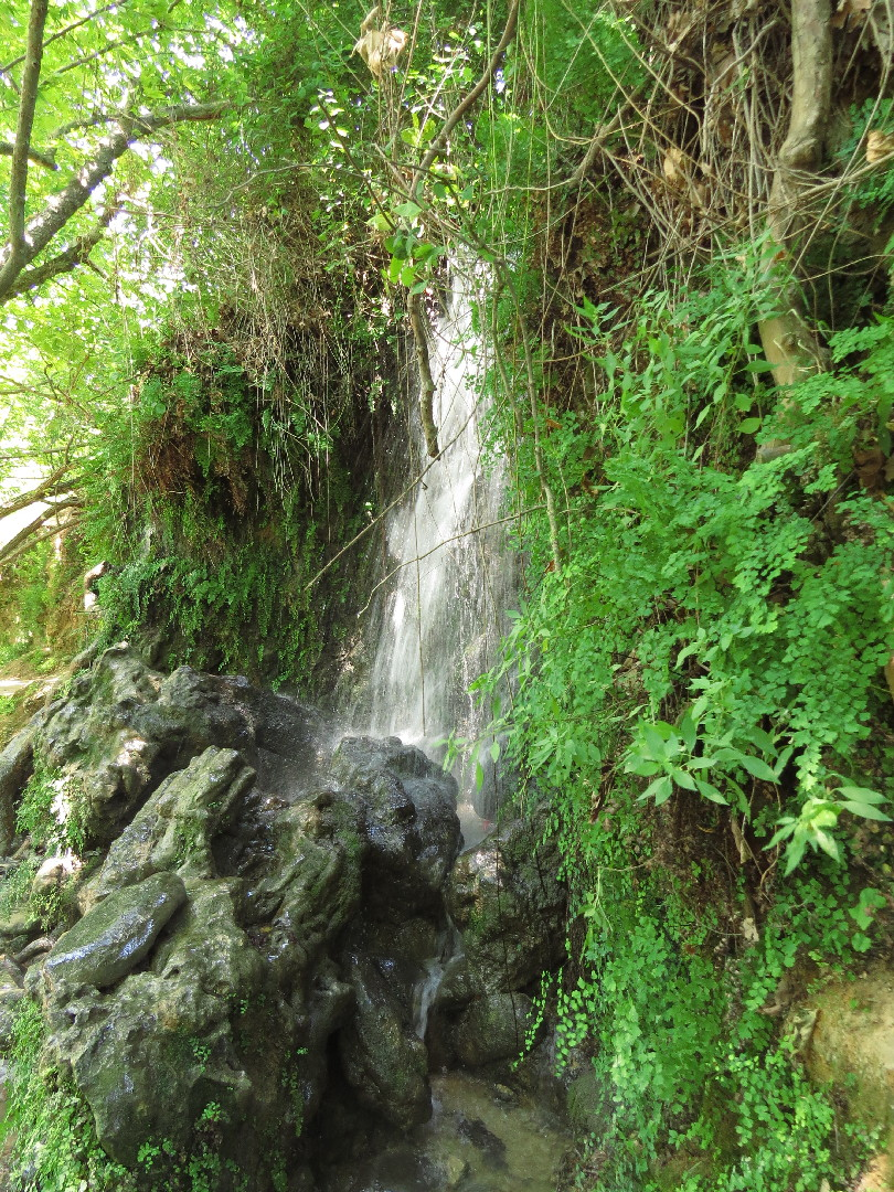 Small waterfall at Snir Reserve