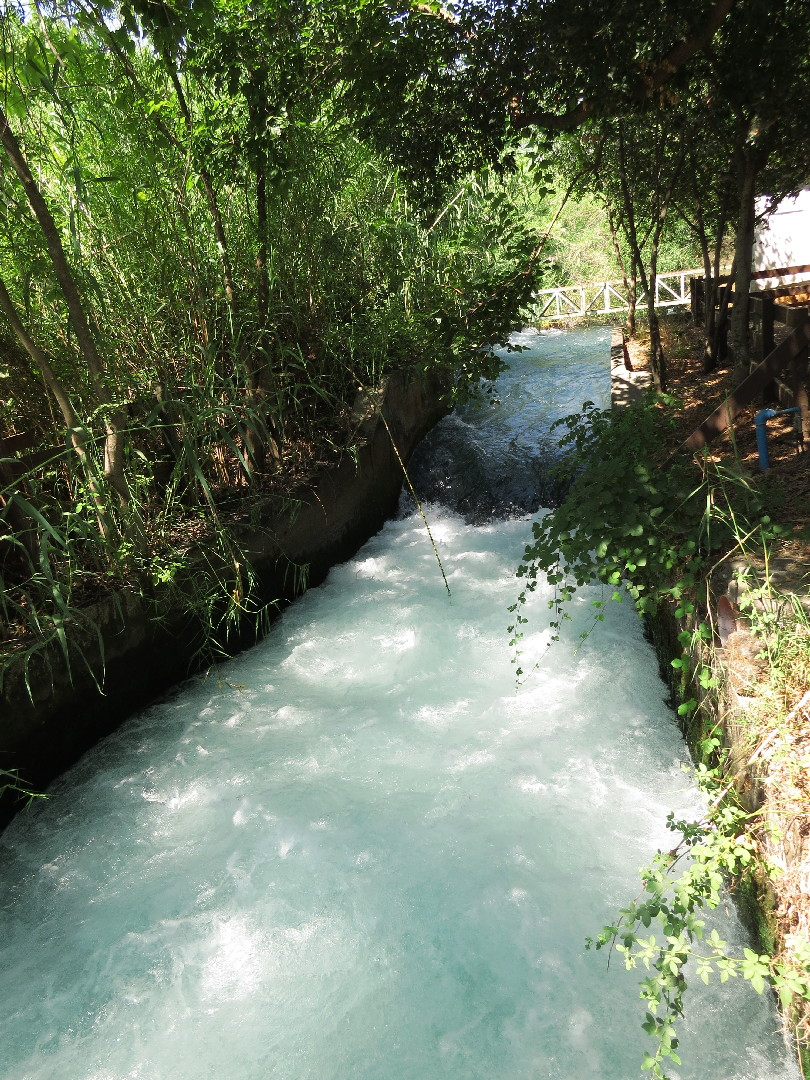 Tel Dan Nature Reserve – Main Source Of Jordan River