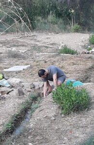 Ein Kerem Stream restoration project. Cleaning the creek