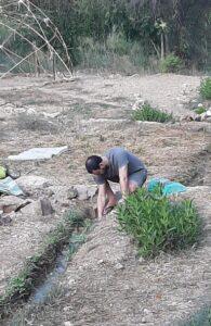 Ein Kerem Stream restoration project. Cleaning the creek