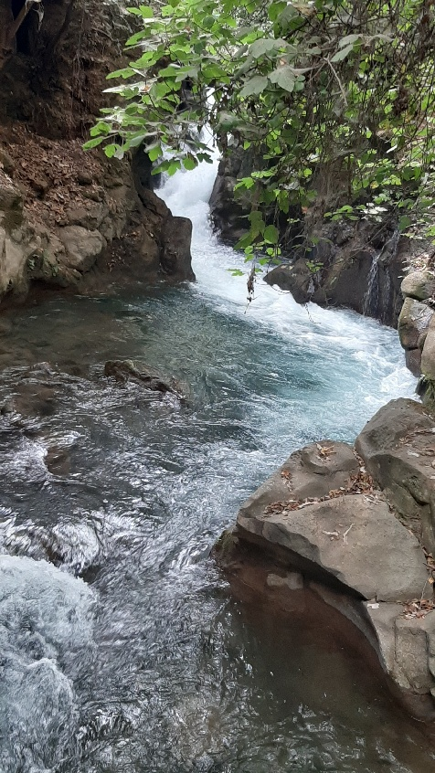 Banias gushing viewed from Suspended Trail