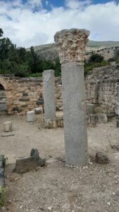 Column and capital. Agrippa Palace. Banias