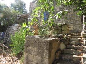 Around the grounds at Yashar's place, Ein Kerem