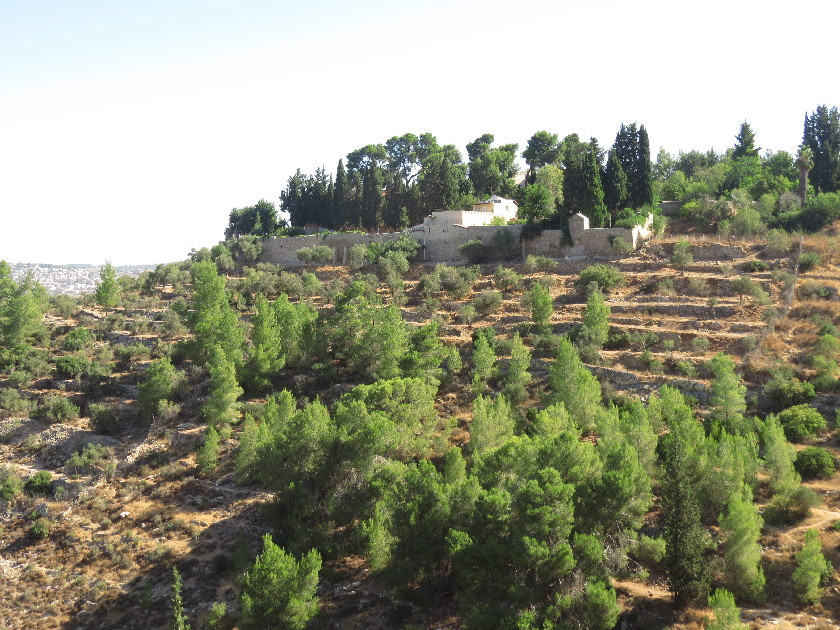 The Sisters of Zion Moanstery, Ein Kerem
