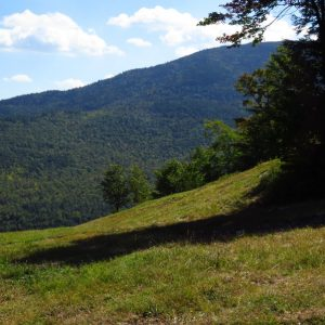 Summer ski slopes, Mount Whiteface, NYS